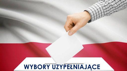 Wybory uzupełniające do Rady Miejskiej w Lubniewicach
